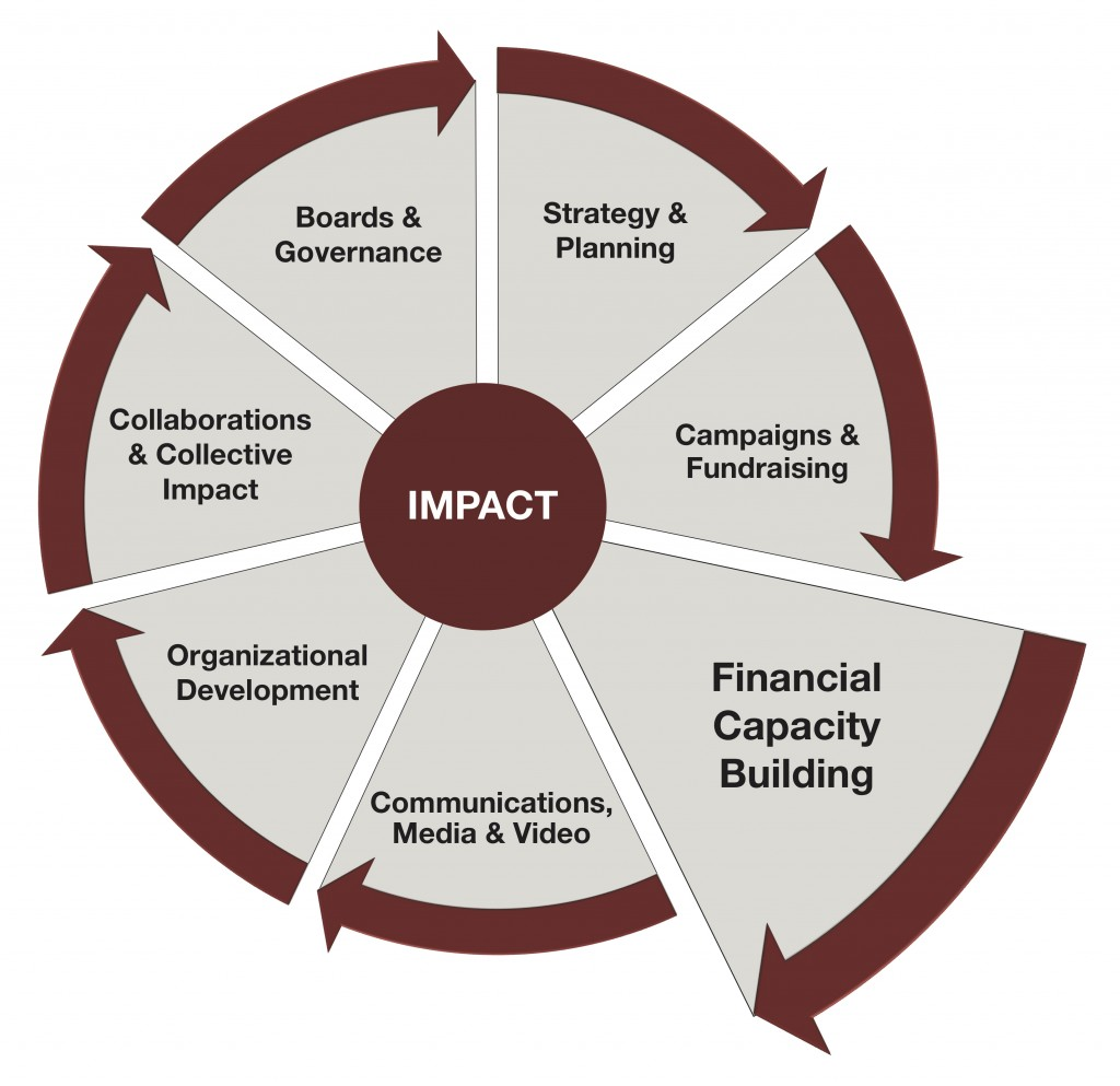 Impact Wheel 2019 - Financial Capacity Building